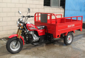 CE EEC 200cc Motor Cargo Three Wheel Motorcycle 3 Wheel Motorcycle pictures & photos
