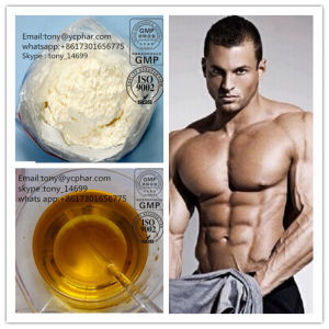 Trenbolone Enanthate Powder CAS 472-61-546 Effective Muscle Mass Steroids pictures & photos