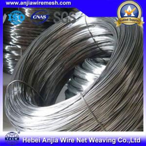 Hot Dipped or Electro Galvanized Iron Wire pictures & photos