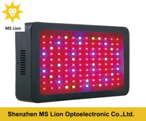 LED Grow Light Full Spectrum 300W with 5 Years Warranty pictures & photos