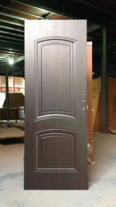 Matt Finish American Panel Door pictures & photos