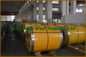 Hot Rolled 310S Stainless Steel Coils on Stock pictures & photos