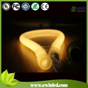 (360 Round) LED Neon Tube with Pins Connect Power Wire/Neon pictures & photos