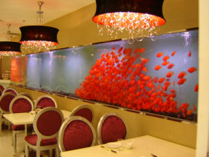 Beautiful Acrylic Fish Tank Made in China