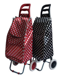 Foldable Shopping Trolley Bag for Outdoor Shopping Dxt-8311 pictures & photos