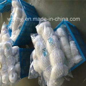 0.50mmx30mmsqx48mdx100m Nylon Monofilament Fishing Net pictures & photos