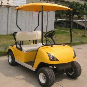 CE Approve 2 Seats Battery Operated Golf Cart (DG-C2) pictures & photos