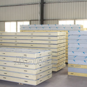 CE Approved Cold Room (VCR30) for Vegetables/Fruits pictures & photos