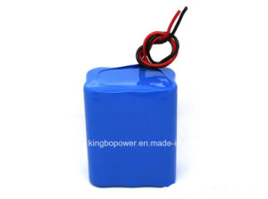 7.4V Lithium Manganese Battery/Rechargeable Li Ion Battery Pack (8800mAh)