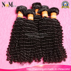Wholesale 100% Unprocessed 5A 6A 7A 8A Brazilian Afro Kinky Human Hair pictures & photos