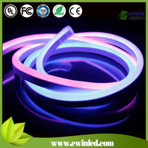 Digital LED Neon for Commercial Installation pictures & photos