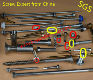 Special Screw Anchor Bolts Stud Bolt T-Bolts Double End Bolt pictures & photos