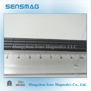 Customized Sintered Permanent Ferrite Magnet with ISO9001 for Motor pictures & photos