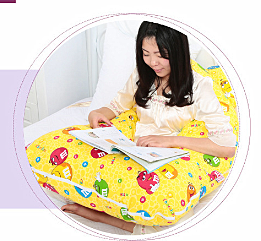 The Wholesale Price U-Shape Pregnant Body Pillow pictures & photos