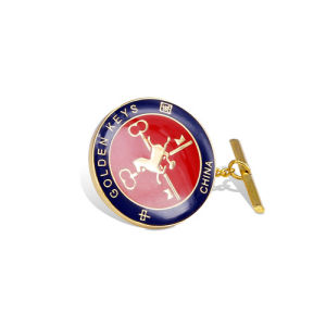 Enamel Metal Badge, Gold Plated Lapel Pin (GZHY-CY-049) pictures & photos