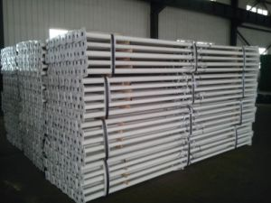 Adjustable Steel Scaffolding Props for Construction pictures & photos