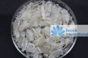 Carboxymethyl Chitosan pictures & photos