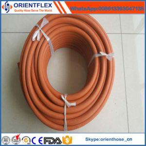 China Manufacturer Flexible LNG LPG Hose pictures & photos