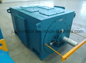 High Voltage Squirrel Cage AC Three Phase Asynchronous Electric Motor pictures & photos