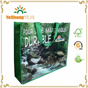 Promotional PP Non-Woven Bag with Logo/PP Non Woven Shopping Bag/Printed Non Woven Laminated Bag pictures & photos