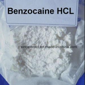 White Powder Benzocaine HCl Anesthetic Anodyne Benzocaine Hydrochloride 23239-88-5 pictures & photos
