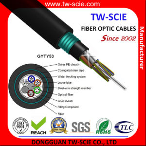 Manufacturers of Outdoor Fiber Optics Armoured 24 96 144 288core Single Mode Fiber Optic Cable (GYTY53) pictures & photos