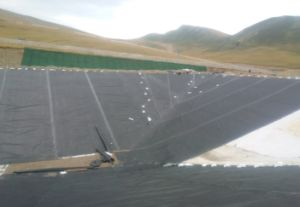 Ecb Geomembrane Waterproofing Membranes for Foundations pictures & photos
