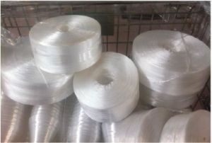 Plastic Rope Making and Twisting Machine pictures & photos