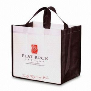 Europe Fashion Style Non Woven Shopping Bag