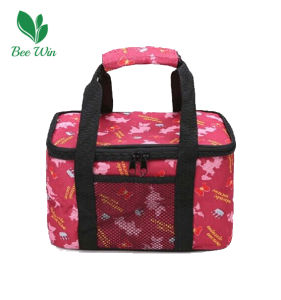 Fashionable Cooler Bag for Picnic (BW-6083)