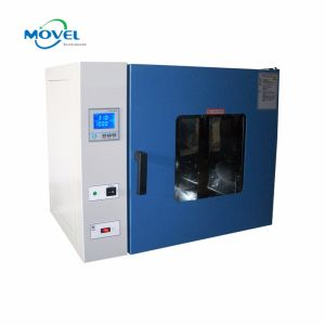 LCD Display Vacuum Forced Convection Laboratory Constant Temperature Drying Oven pictures & photos