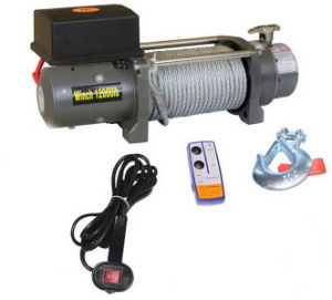12V Electric Car Winch pictures & photos
