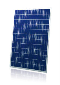 Yingli Brand High Quality Poly Solar Panel (SZYL-P300-36) pictures & photos