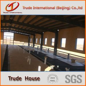 H Steel Modular/Mobile/Prefab/Prefabricated Livestock Building pictures & photos