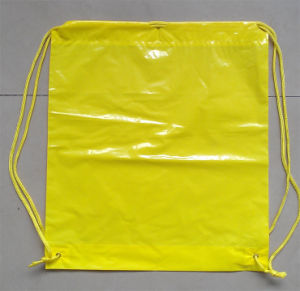 LDPE Backpack Gift Shopping Bags for Climbing (FLS-8206) pictures & photos