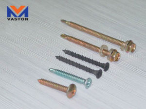 Screws Drill Nail pictures & photos