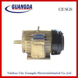 CE SGS 4kw Triple-Phase Air Compressor Motor pictures & photos