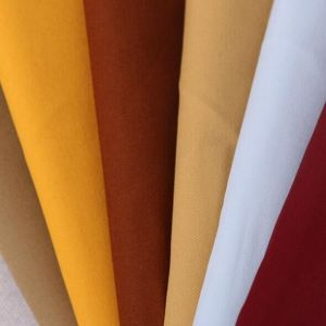 Cotton Woven Fabric pictures & photos