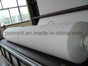 Hot Sale China Manufacturer Filtration Non-Woven Geotextile pictures & photos