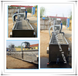 Scaldig Pool/ Slaughtering Equipment/ Poultry Slaughter Equipment pictures & photos