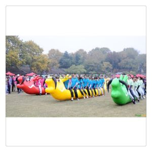 Colorful Inflatable Insect Racing Sports Inflatable Games for Team Building