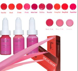 Professional Colorful Tattoo Ink for Permanent Makeup (ZX-0521) pictures & photos