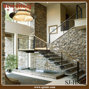 Stainless Steel Material Cable Railing Staircase (SJ-H855) pictures & photos
