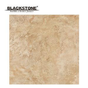 Nice Design Rustic Floor Tile From Foshan 600X600 (D6920) pictures & photos
