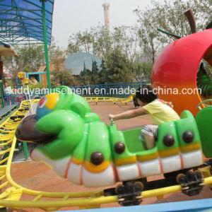 Small Outdoor Playground Equipment Rides pictures & photos