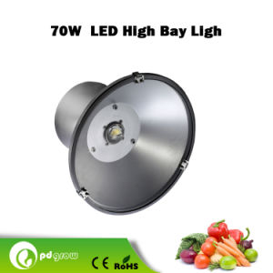 Pd-Hb-70 70W CREE LED Bar Light Driving Lamp