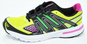 Multi-Color Mesh Running Sport Shoes (GL-1512)