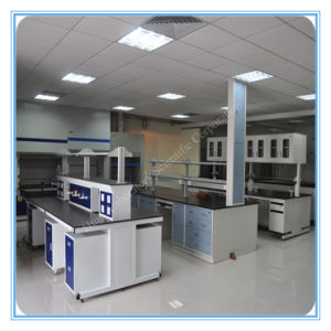 Laboratory Floor Mounted Workbench Furniture pictures & photos