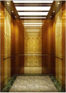 Aote Professional Vvvf Drive Home Villa Elevator (RLS-256) pictures & photos