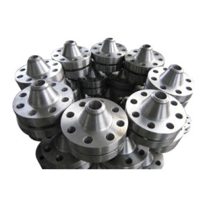 Stainless Steel Ring Flange Forging pictures & photos